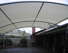 canopy style structure 1009